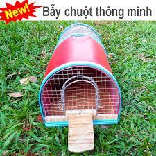 bay-chuot-thong-minh-hieu-qua